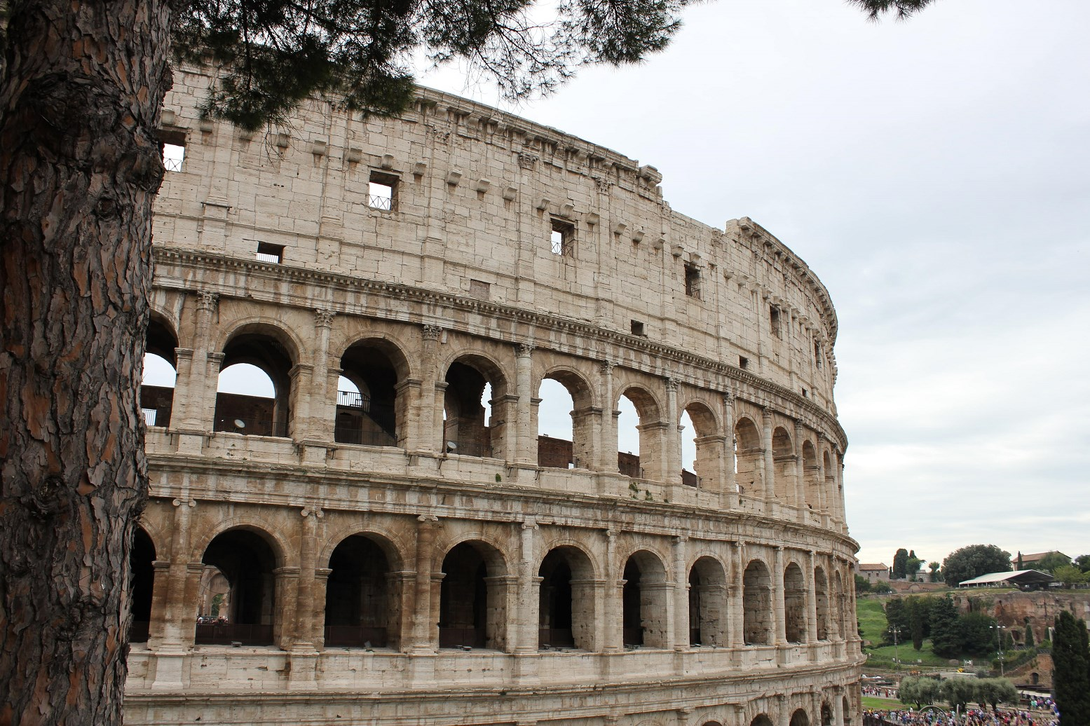 colosseum facts header