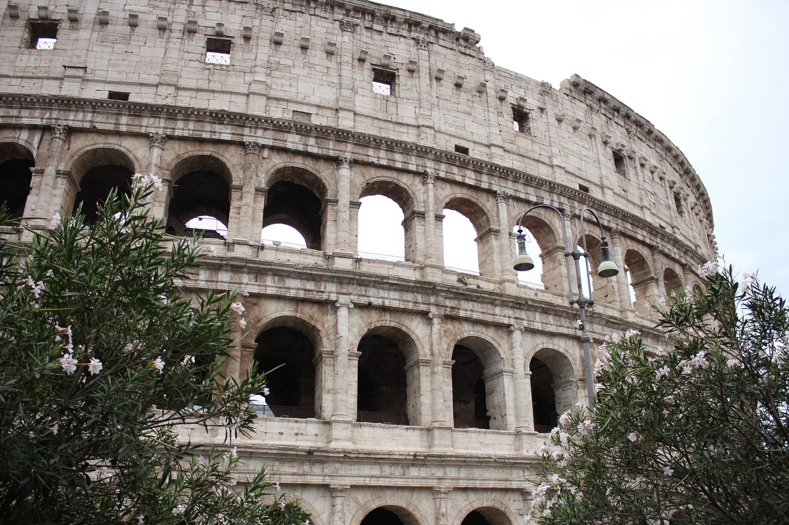 where is the colosseum Header