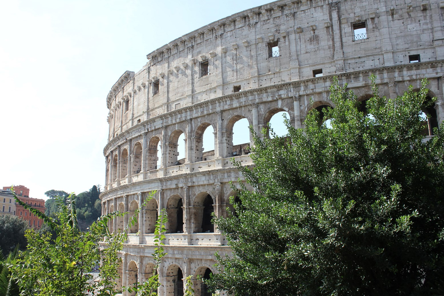 colosseum tours underground Header